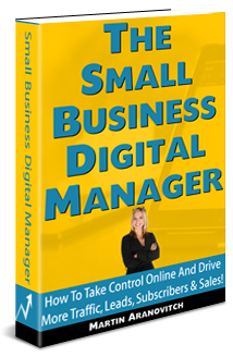 The Small Business Digital Manager: How To Build A Profitable Career Helping Small Businesses Improve Results Online