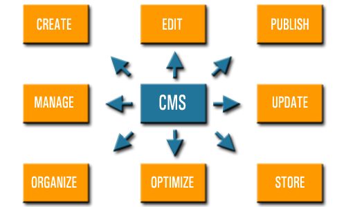 Content Management Systems Empower Business Owners